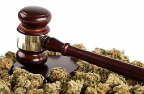 Истрага за неовластено производство и пуштање во промет на марихуана во Визбегово