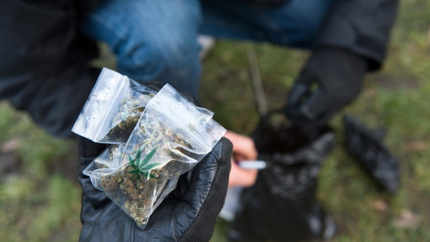 """Кумановци се исплашиле од полицајци, па фрлале паковки марихуана од """"ауди"""""""